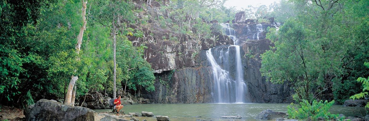 Cedar Falls, Proserpine, a beautiful daytrip from Airlie Beach